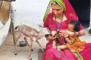 Photo © Himanshu Vyas pour Hindustan Times