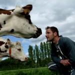 LE changement de regard sur les animaux et ses conséquences pratiques.