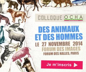 Ne manquez pas le nouveau colloque de l'Ocha : «Des animaux et des hommes»